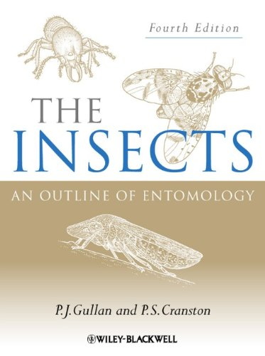 The Insects: An Outline of Entomology