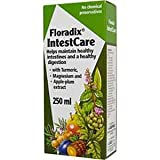 Floradix IntestCare 250ml - SAL-1701