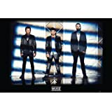 (24x36) Muse-Lights Poster