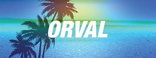 8-wide-orval-name-on-blue-palm-tree-beach-vinyl-decal-bumper-sticker