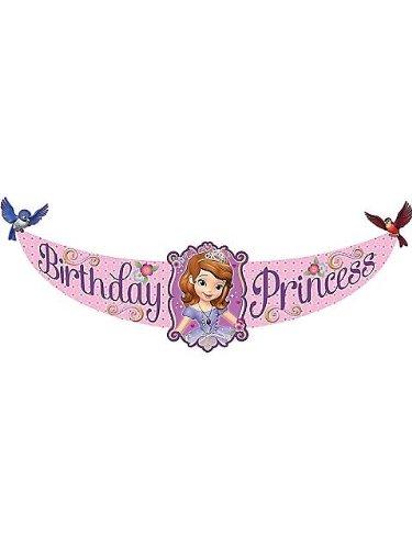 Best Prices! Hallmark - Disney Junior Sofia the First Birthday Princess Banner, Purple