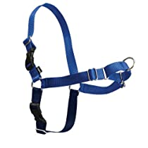 PetSafe Easy Walk Dog Harness, Petite/Small, Royal Blue/Navy