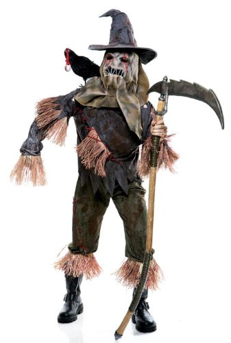 Scary scarecrow costume the wicked of oz large from the wicked of oz