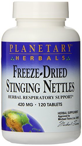 Freeze-Dried Stinging Nettles
