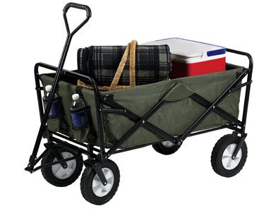 Green Folding Wagon by Mac Sports