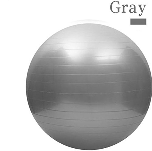 65CM Gym Fitness Ball, H&Z Exercise Pilates Balance Swiss Yoga Gym Fitness Ball Aerobic Abdominal Aerobic Abdominal Static Strength Exercise Stability Ball (Grey)