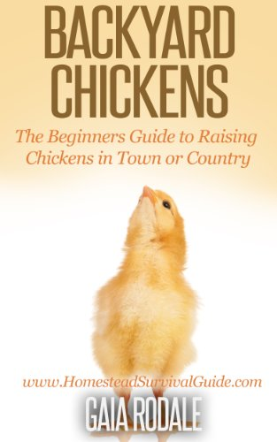 Free Kindle Book : Backyard Chickens: The Beginners Guide to Raising Chickens in Town or Country (Sustainable Living & Homestead Survival Series)