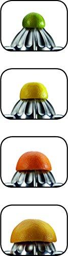 Gastroback-41149-Zitruspresse-silberfarben