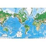 【並行輸入品】特大世界地図!幅約4m×高さ約2.6m、World Map Paper Wall Mural