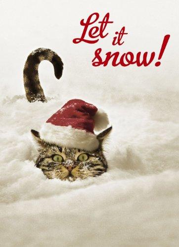 Avanti Plus Christmas Cards, Snowbound Tabby,