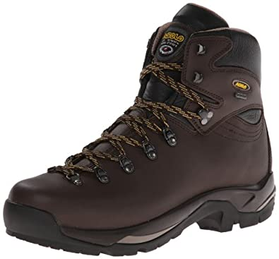 Asolo Mens TPS 520 GV Hiking Chestnut Leather Boot 7 M US