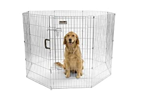 Precision Pet Boxed Exercise Pen with Door, 42-Inch, Silver
