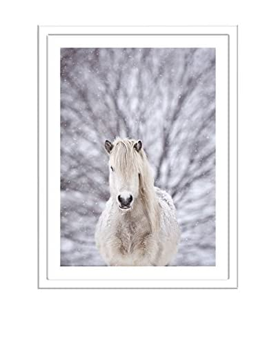 Getty Images Snow Horse