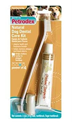 Petrodex Dog Dental Care Toothpaste Kit With 2 Toothbrushes