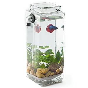 Newest version noclean aquariums for Betta fish tanks amazon
