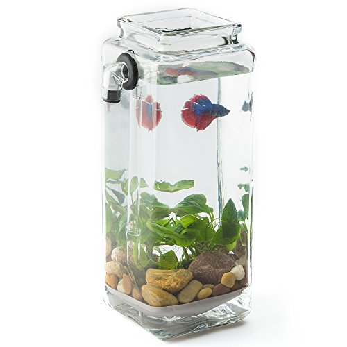 Newest version noclean aquariums gravityflow self for Betta fish tanks amazon