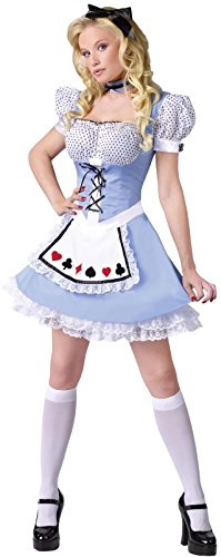 Alice in Wonderland Adult Costume Size:Small/Medium