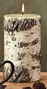 Pack of 4 Unique Birch Bark Mountain Scented Pillar Candles - 7""