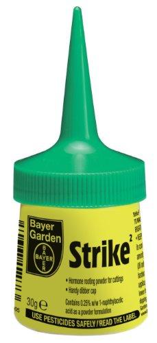 bayer-garden-2-strike