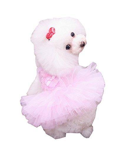 [Hqclothingbox Fashion Puppy Dog Princess Dress Dog Cherry Lace Skirt Pet Dog Tutu Dress Pink XS] (Mermaid Fairy Costumes)