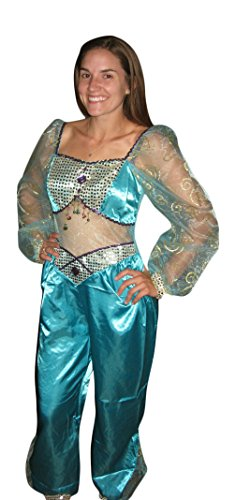 Disney Store Deluxe Jasmine Adult Costume Womens Medium 8 - 10 Aladdin