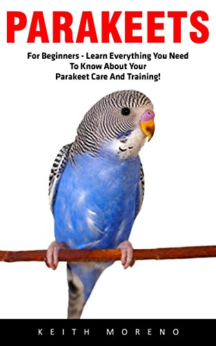 Parakeets: For Beginners – Learn Everything You Need To Know About Your Parakeet Care And Training! (Budgie Care, Parakeet Books, Parrot Training)