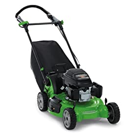 Lawn-Boy 10795 Insight Platinum – Best-value Self-Propelled Lawn Mower