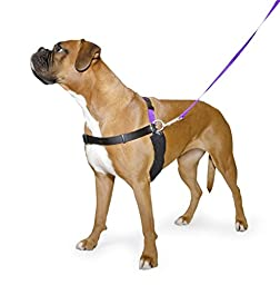 Ancol /Pure Dog Listeners - Stop Pulling Dog Training Harness & Lead Set - Large Size 7-8 (inc DVD)