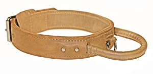 "Dean and Tyler ""SIMPLICITY+"", Dog Collar with Handle and Chrome Plated Steel Hardware - Tan - Size 36"" by 1-3/4"" - Fits Neck 34"" to 38"""