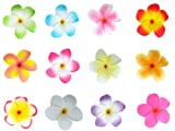 Bundle Monster Hawaiian Plumeria Flower Foam Hair Clip Accessory Set 12 Jewelry