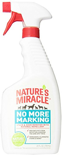 natures-miracle-pet-stain-and-odor-remover-24-oz