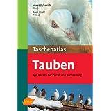 Taschenatlas Tauben: 300 Rassen für Zucht und Ausstellung
