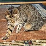 Da Bird – Cat Catcher Mouse Refill