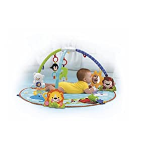 Fisher-Price Precious Planet All Around Musical Playtime Gym