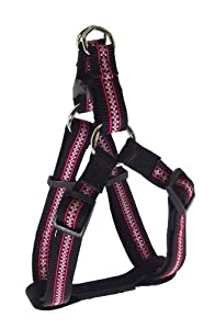 Hamilton Piccadilly Collection Adjustable Easy-On Dog Harness, 5/8-Inch by 12 to 20-Inch, Checks