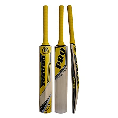 Protos Blaster Kashmir Willow Bat