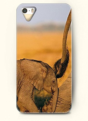 Oofit Phone Case Design With An Baby Elephant Follow Its Mother Elephant For Apple Iphone 5 5S 5G