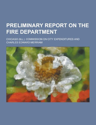 Preliminary Report on the Fire Department