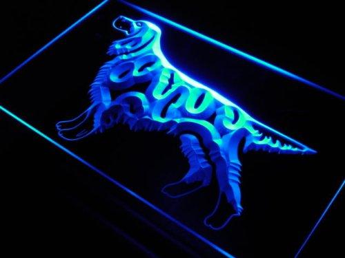 adv-pro-j535-b-gordon-setter-dog-breed-shop-neon-light-sign-barlicht-neonlicht-lichtwerbung
