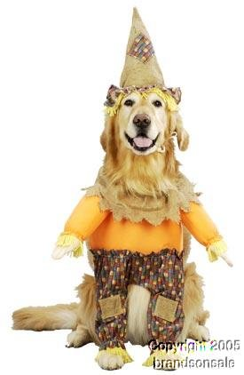 Pet Scarecrow Dog Costume For X-small Dogs