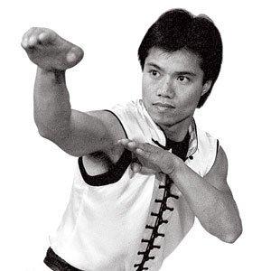 Amazon.com : Century Master Tat Mau Wong's Choy Lay Fut Kung Fu DVD