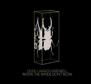 Farewell/Where the Winds Don't Blow (4-Track Maxi)