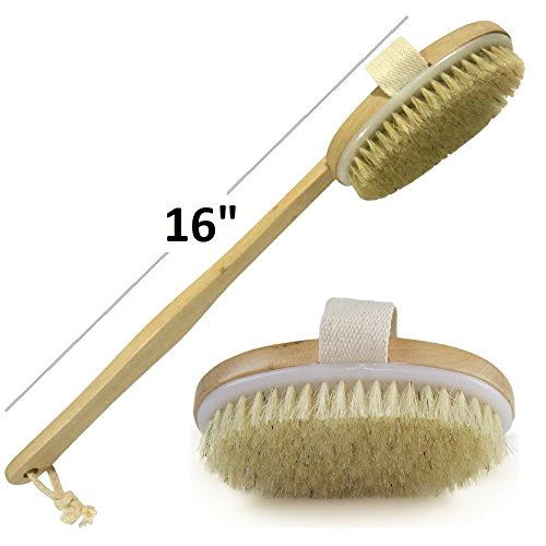 Wholesome Beauty Dry Skin Body Brush  Removable