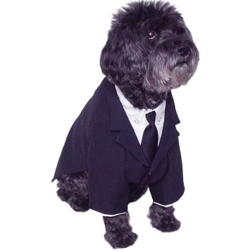Amazon.com : Dog Business Suit Shirt Tie Size Petite : Pet