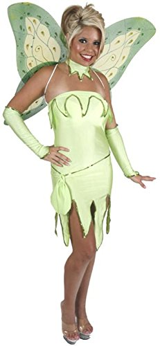 Adult Emerald Fairy Costume Small (4-6)