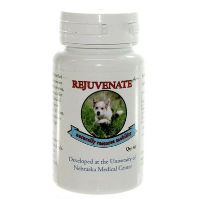 Rejuvenate Joint Supplement