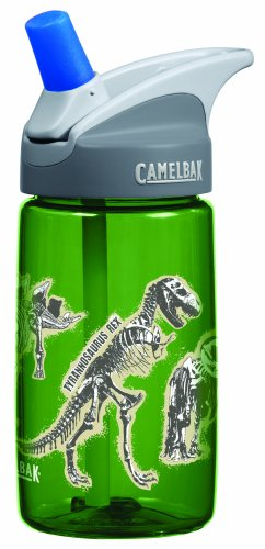 CamelBak 0.4-Liter Kids Bottle, Dinosaurs