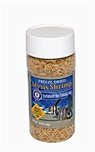 San Francisco Bay Brand ASF71705 Freeze Dried Mysis Shrimp for Fresh and Saltwater Fish, 13gm