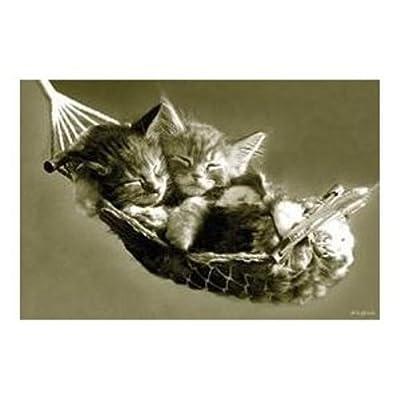 Katzen - Katzen In Der Hängematte Poster von 1art1 GmbH - Gartenmöbel von Du und Dein Garten