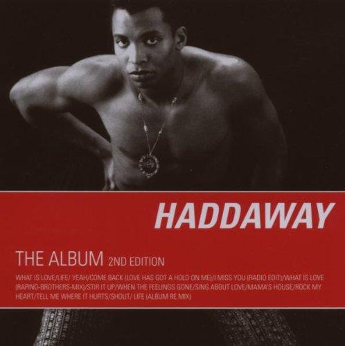 Haddaway-The Album-RERIP-CD-FLAC-1993-flicFLAC Download